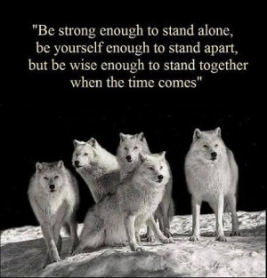 ... be wise enough to stand together when the time comes. - wisdom quote