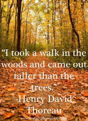 ... Henry David Thoreau #photography #nature #henrydavidthoreau #quote
