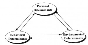 Image of Social learning theory