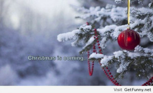 funny-december-pics-funny-quotes-funny-winter-2013-funny-sayings-and ...