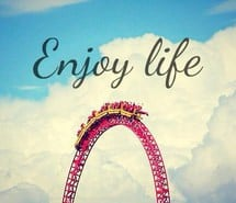quotes life is a roller coaster