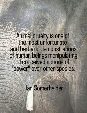 Ian somerhalder quote animal cruelty,,and They Will Stand Before God ...