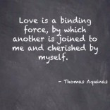 View bigger - Thomas Aquinas Quotes (FREE!) for Android screenshot