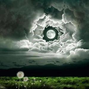 Beautiful moon!