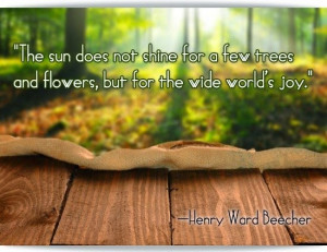 nature quote by henry beecher nature quotes nature quotes nature