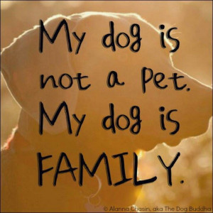 My dog is not a pet. My #dog is family. Families Quotes, Dogs Quotes ...