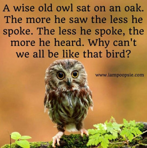 wise old owl sat on an oak, the more he saw the less he spoke... # ...