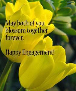 Happy engagement yellow tulips