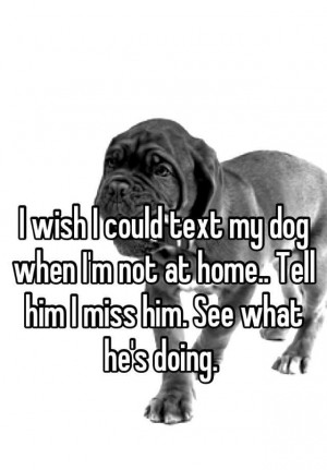 Wish I Could Text My Dog When I'm Not At Home… Tell Him I Miss ...