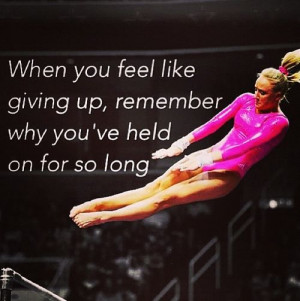 Gymnastics, especially in my family, is more than a sport. It's our ...