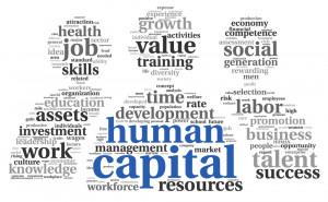 ... human capital management based on organizational development best