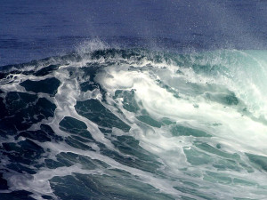 The waves on the sea go up and down, ( raise and lower arms)