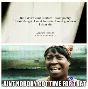 Novel quotes Ain 39 t nobody got time for that