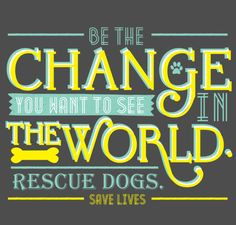 ... Rescue dogs. Save lives. Gandhi quote. Texas Star Rescue fundraiser; $