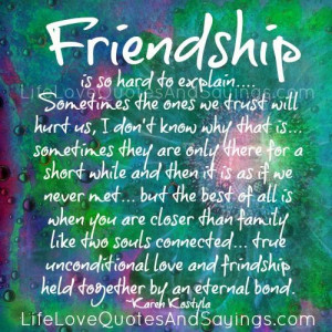 Friendship Is So Hard To Explain..