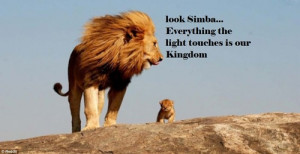 the lion king disney quotes lions wildlife paralells