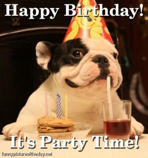 Happy Birthday Funny Dog Party Time