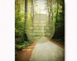 ... inspirational quote, nature quote, green, brown, New Hampshire forest