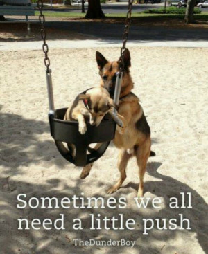 german shepherd quotes funny
