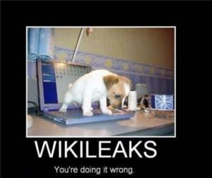 wikileaks - http://www.jokeoftheday.me/wikileaks-2/