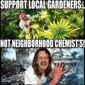 Marijuana is Not Meth~ stop allowing the government's ignorant scare ...