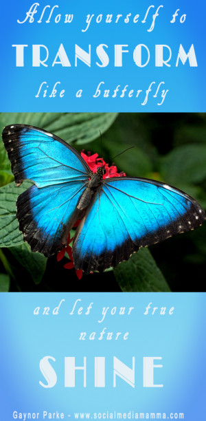 Butterfly Inspirational quotes Inspiring quotes Gaynor Parke www ...