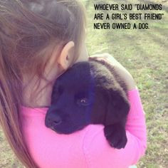 Black lab / Labrador puppy - Quote - Whoever said