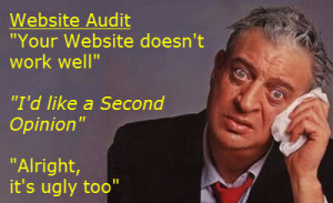 Website audit funny quote