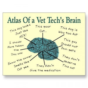 Vet Tech brain, true story.