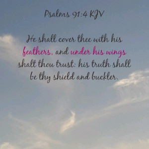 can rest and be safe under His wings