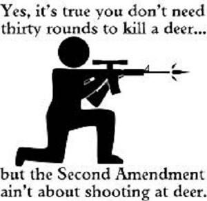second-amendment-2-200px.jpg