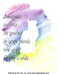 Às vezes, nossas vidas são tocadas por amigos gentis que ficam só ...