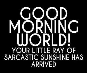 Good Morning World! Your little ray of sarcastic sunshine has arrived