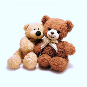 Lovely Cute Teddy Bears Pictures - Top Profile Pictures