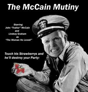 McCain Vs The Wacko Birds