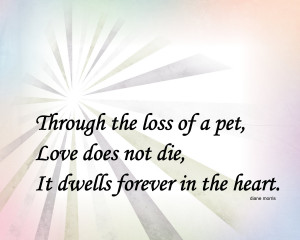 Sympathy Dog Loss Quotes Pet sympathy message .