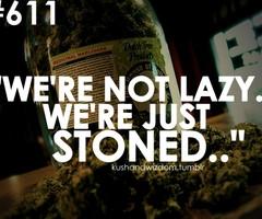 stoners quotes top 10 stoner quotes