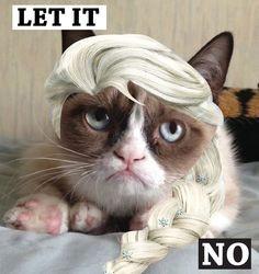 FREE Grumpy Cat Printables. Including