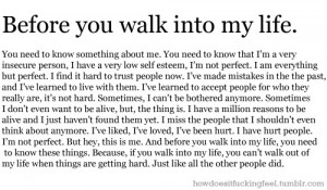 Before you walk into my life, you need to know something