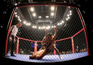 Cage Fighting Picture