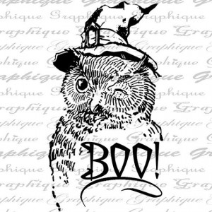 Witch Owl Winks Boo Word Witches Hat Halloween Quote by Graphique