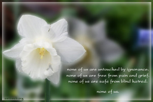 Buddhist quotes and sayings, none of us are untouched by ignorance
