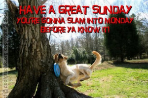 Have A Great Sunday – Funny Sunday Graphic For Funny Orkut Friends