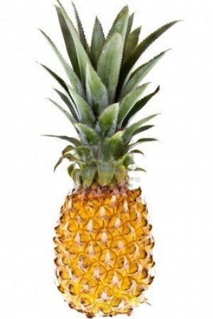 Related: Psych Quotes , Psych Pineapple Logo , Psych Wallpaper , Psych ...