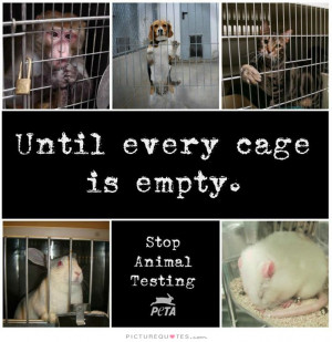 Animal Rights Quotes Animal Cruelty Quotes