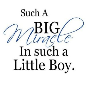 Little Boys Quotes And Sayings