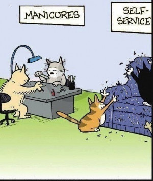 cats manicure joke pic ROFL Funny Cartoon Joke!