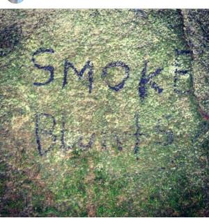 Smoke blunts .