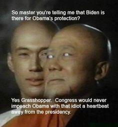 Grasshopper & politics. . . . More