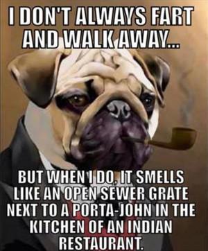 dog farts